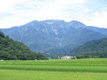 八海山とコシヒカリ
